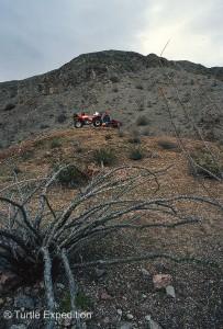 Call of Baja 1988 2 Low Res 001