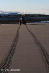 We only ride Quads below the water line so the next tide will eliminate the tracks.