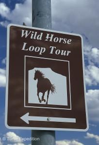 Wild Horse Loop025