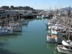 The wooden docks overlooking the fishing fleet are a great place to enjoy a fresh cracked crab and some famous sour dough bread from the Boudin Bakery.