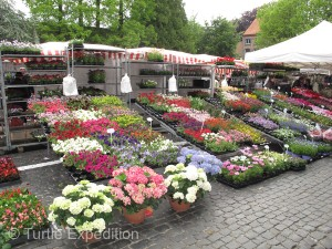 The Saturday morning market offered a huge selection of fresh produce and flowers.