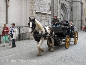 Beautiful horses pulled carriages at a fast clip around town, and they didn't know all the traffic laws.
