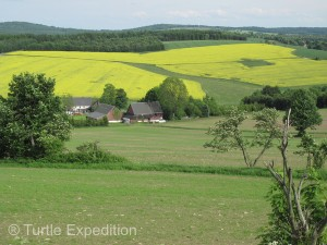 Fields of rapeseed (canola family) gave some color to the German countryside.