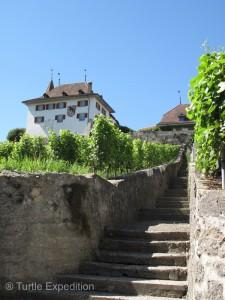 The castle tower of Erlach was founded around 1100.