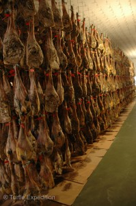 With the first cooling process finished, the hams are aged and cured naturally at 15°C to 25°C (59°F to 77°F) for up to four years.