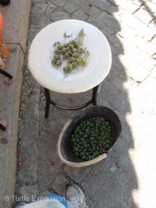 The olives on the white plate were just ready to eat. Carlos served them with salt and wild oregano.