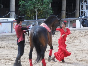 As a beautiful Flamenco dancer twirled about, the horse seemed to be listening to the music and having a good time keeping with the rhythm.