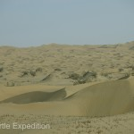 Sand dunes as far as the eye can see.....