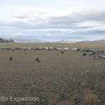Arriving at the site of the 16th annual Golden Eagle Festival in Olgii, Western Mongolia, we parked with other spectators around the competition field.