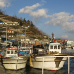 The nearby fishing village of Samcheok was a colorful place to walk around.