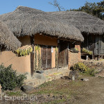 The straw thatched roofs, traditionally said to be servants' quarters, were part of what gave the Ryu clan village its historic appeal.