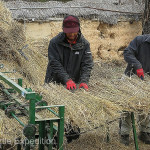 We happened upon a group of men using a unique sewing machine to stitch the rice straw together for later use on the roofs of the village.