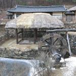 Korea Blog 6 20