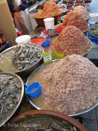 Various heaps of brined seafood were ready for customers.