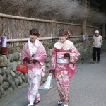 Two young girls in their beautiful kimonos stroll through a park in Kyoto.