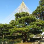 Japan Parks & Temples 11