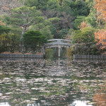 Late autumn colors are reflecting in the Kyoyochi pond at Kyoto's Ryoanji Temple Park. It was made in the late 12th century.