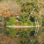 Japan Parks & Temples 35