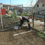 Spring was in the air, time to prepare the soil and plant the vegetable garden.