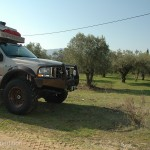 We found quiet parking next to this olive grove.