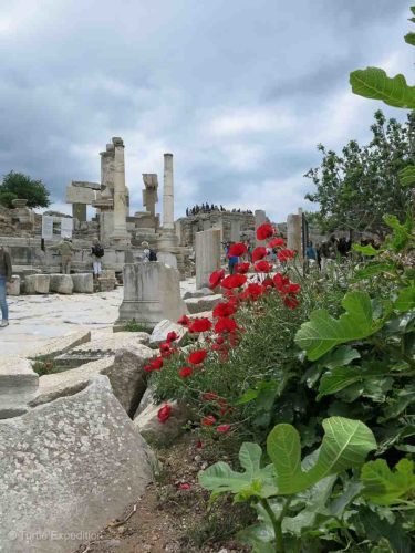 Ephesus is one of the most important attractions in Turkey.