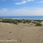 We had read that Patara was famous for its 18 km, (11 mile), beach along the Turkish Riviera.