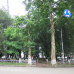 The Round Garden in Tbilisi which was located near the UN Headquarters was popular with babysitting grandparents.