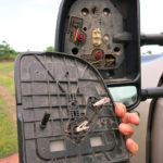 Monika found parts of the driver side mirror. The electronics were history!