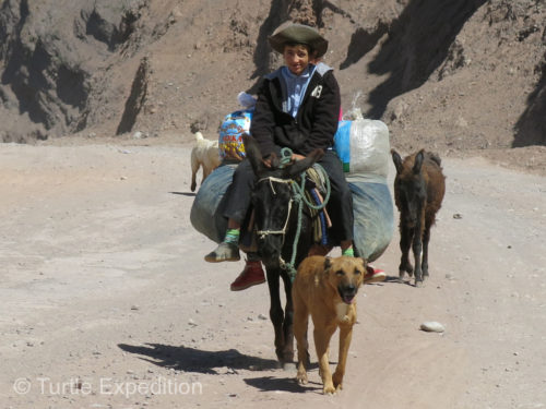 Locals were transporting themselves and their goods on donkeys.