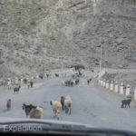 Tajikistan 3 17