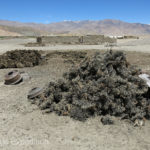 Yak dung or garden waste, whatever would burn was saved for winter fuel.