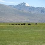 Tajikistan 7 026
