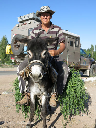 Since Gary had owned a burro when he lived in Mexico as a young boy, he always has a soft spot for these work animals of the world.