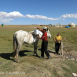 Horses are well cared for. This one gets a bath with water from a spring-fed hand pump.