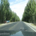 Where there is water there is life. We entered the Hotan area through an avenue of beautiful popular trees.