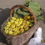 A basket of ripe figs.