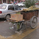 Street sweeping employs many people in China.