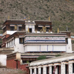 The architecture of Tibetan Buddhist temples, pagodas and houses was very unique.