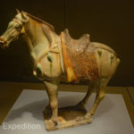 Tri-colored horse, Tang Dynasty