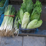 We did not pass up the chance to buy some fresh Chinese cabbage & leek.