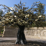 """This """"art tree"""" may have replaced an ancient tree standing on the same spot."""