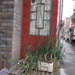 China Blog 24 79