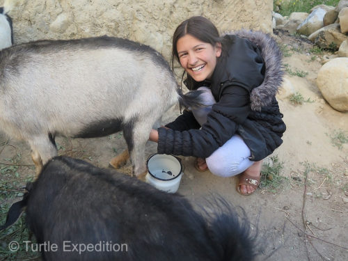 Masha's ability to transition from herding and milking goats to a city life and a very demanding education program was remarkable. Yes, she still knows how to milk goats!
