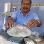 This man sold us some freshly caught trigger fish, one of our favorite reef fish from the Pacific coast of Mexico.