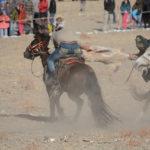 Mongolia Blog 5 058