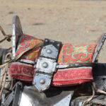 Mongolia Blog 5 073