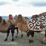 Mongolia Blog 6 023