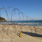 Part of Samcheok beach was barb-wired off. We heard that North Korean boats and divers, refugees but also spies and soldiers have tried to invade this peaceful spot on many occasions.