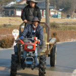 Hahoe villagers at work. Their traditional life does not stop because of visiting tourists.