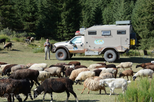 While eating breakfast in the Karakol Valley, Kyrgyzstan, Gary was watching local traffic pass by.